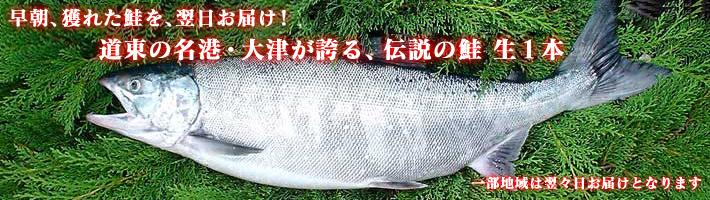 shake-nama1-710-200.jpg