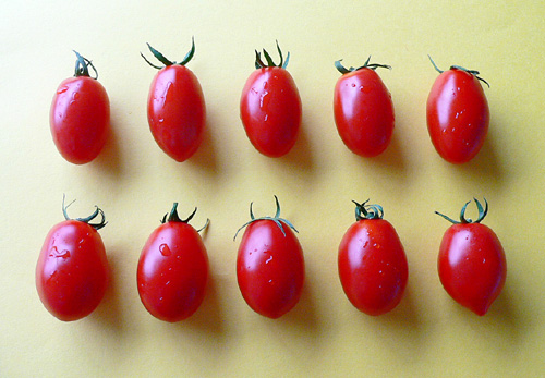 tomato21.jpg