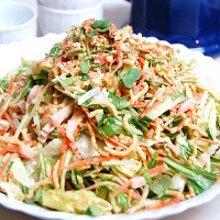 太揚げ麺のサラダランチ