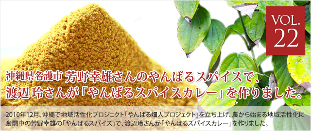 vol.22 芳野幸雄さんの「やんばるスパイス」でつくった、渡辺玲さんの「やんばるスパイスカレー」