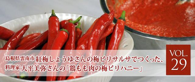 vol.29 松尾さんの梅ピリサルサでつくった、料理家 大平美弥さんの鶏もも肉の梅ピリハニー