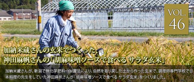 vol.46 加納米蔵さんの玄米でつくった、神田麻帆さんの「胡麻味噌ソースで食べる サラダ玄米」