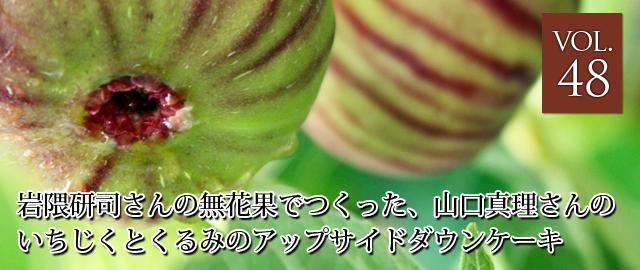 vol.48 岩隈研司さんの無花果でつくった、山口真理さんのいちじくとくるみのアップサイドダウンケーキ