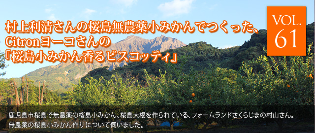 vol.61 村上利清さんの桜島無農薬小みかんでつくった、Citronヨーコさんの『桜島小みかん香るビスコッティ』