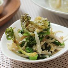 うどと菜の花、キヌアのサラダ