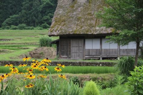 shirakawagou_201307.JPG