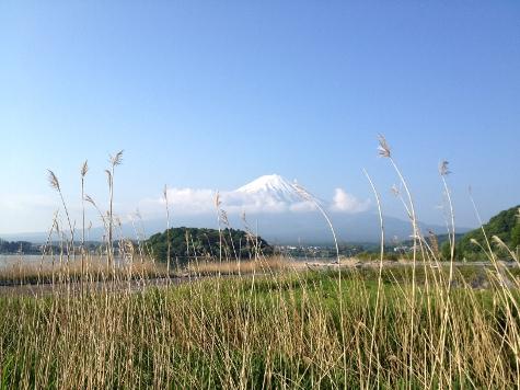 yamanakako_0527_1.JPG