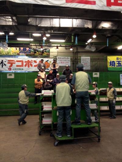 miikumaster02_20120412.jpg